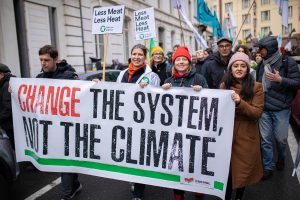 Malin Björk på klimatdemonstration